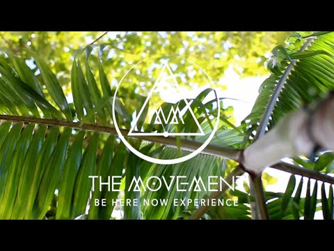 THE MOVE MENT - 4TH EDITION - JUNE 1ST